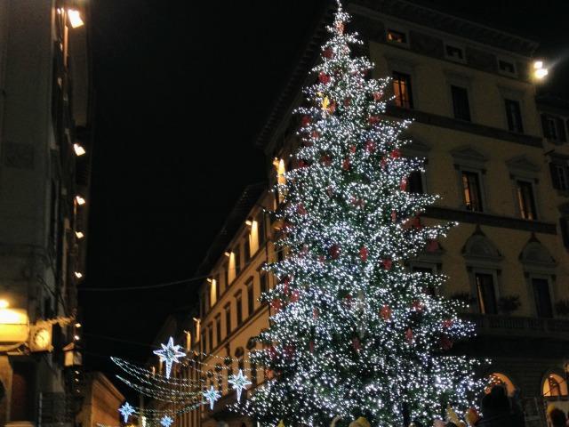 12月8日、いよいよ今日からクリスマス!!広場のツリーも点灯しました。