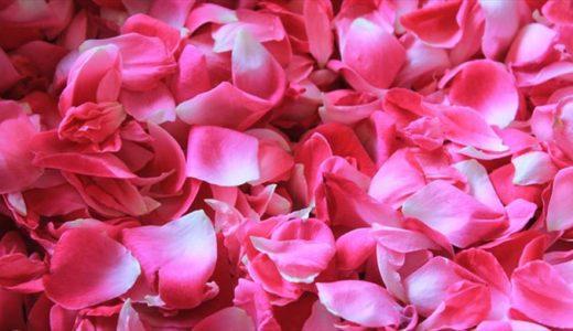 いい香りは女を上げる♡サンタ・マリア・ノヴェッラ薬局のポプリがおすすめ!